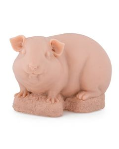 A Pound of Flesh Tattooable Synthetic Guinea Pig (Thumbnail)