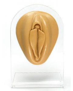 Silicone Vagina Display - Tan Body Bit Version 1